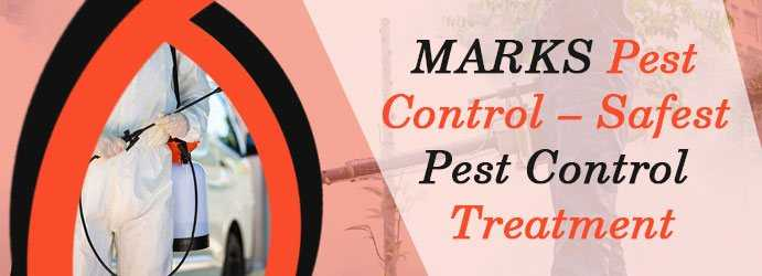 5 Reasons you should Plan Bed Bugs Pest Control at Home
