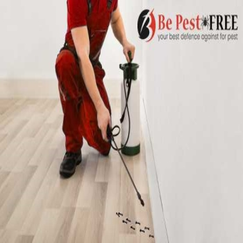 5 Things to Do to Prepare your Home for Pest Control