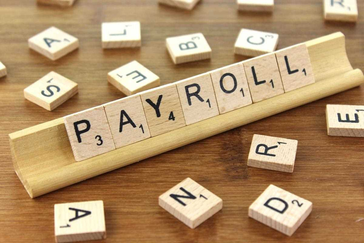Steps to Find Best Payroll Company for Small Businesses