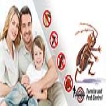 Get a Free Annual Pest service From Sure Shot Exterminator