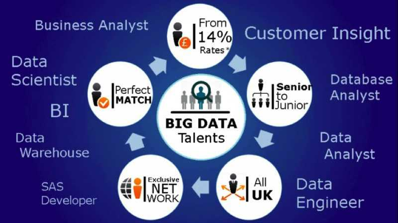 What is the Difference between the Roles of a Data Analyst, Data Engineer, and Data Scientist