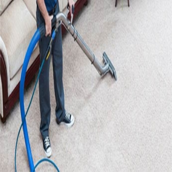 Why Avail Cheap Carpet Cleaning Services?