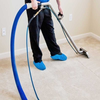 Carpet Cleaning Chemicals and Household Cleaners That Pose Harms