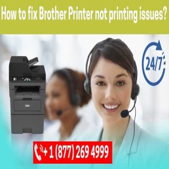 How to fix Brother Printer not printing issues?