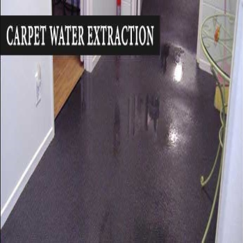 Myths That You Need to Know About Carpet Flood Damage Restoration