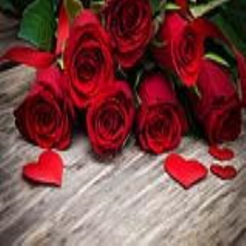 VALENTINE ROSES: THE LANGUAGE OF LOVE THAT THEY SPEAK