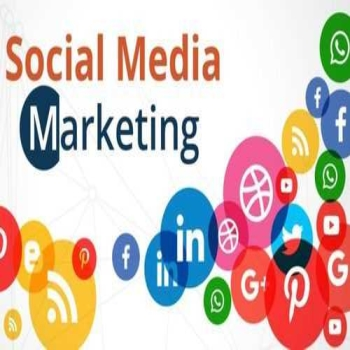 Role of Social Media Marketing to Rank A Website