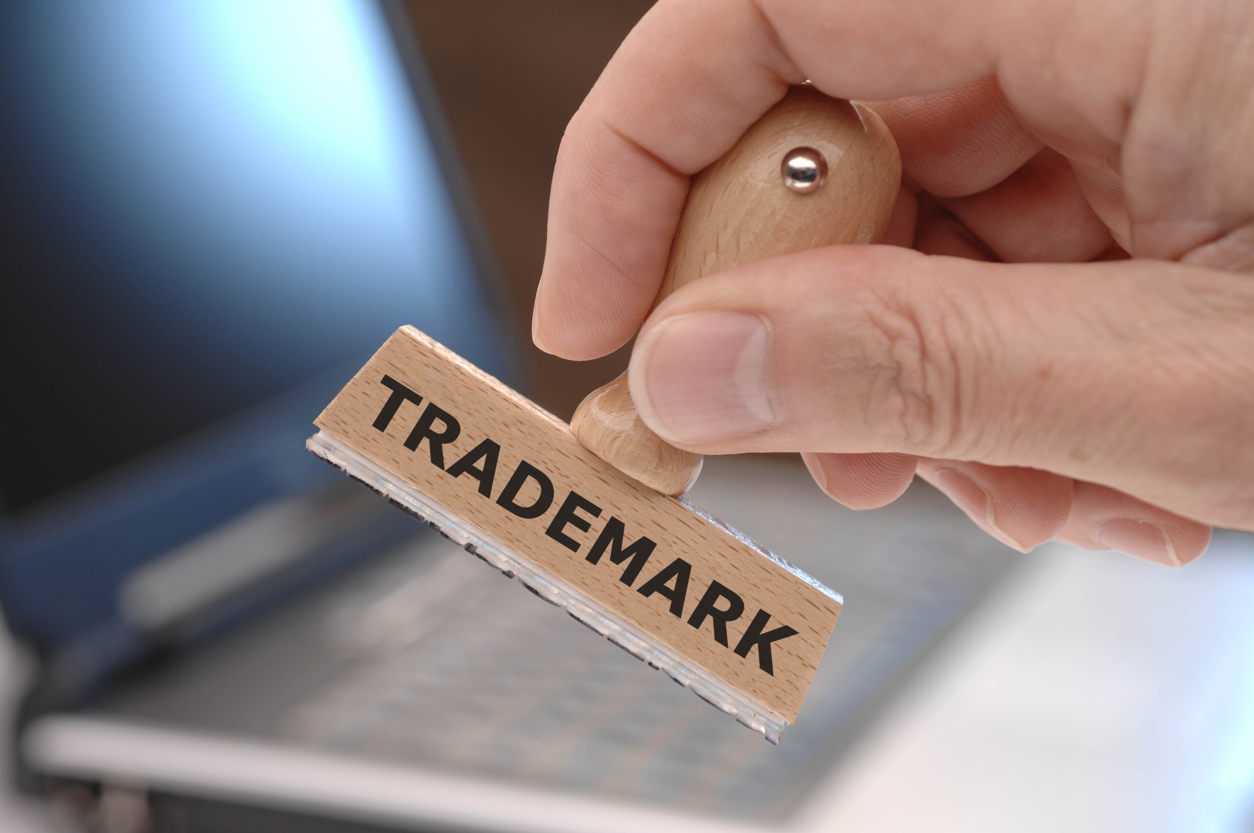 What Are The Sections To Fill In The Application Of Trademarking A Logo?
