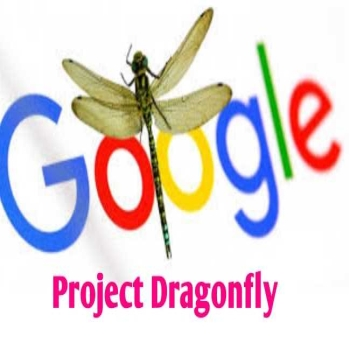 Dragonfly: A Search Engine by Google