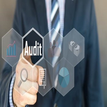 Ten Essential Things You Must Know about IRS Audits Function