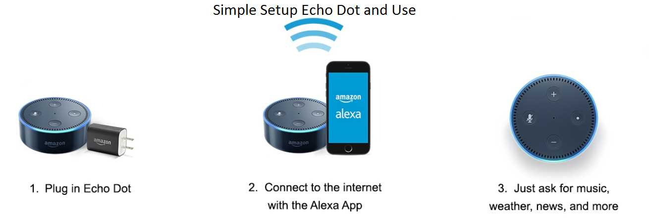 How to Setup Alexa?