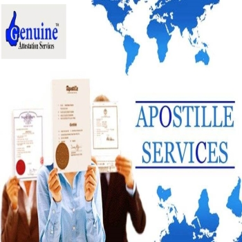 DC Mobile Notary Apostille Service