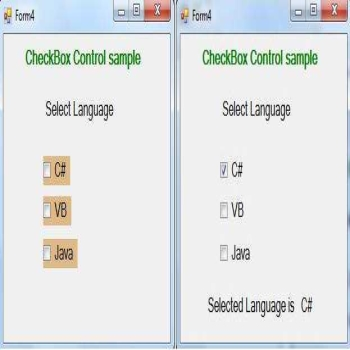 How should use CheckBox Control in VB.Net