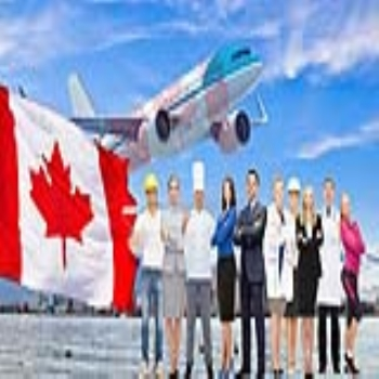 Why people prefer immigration to Canada from India?