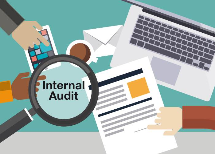 Internal Audit - Nature & Business Objectives