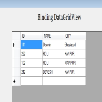 Ways to Bind DataGridView in Window Forms C#