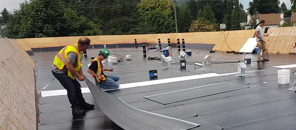Flat Roof Maintenance Tips You Must Know