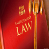Why understanding employment law is so crucial today