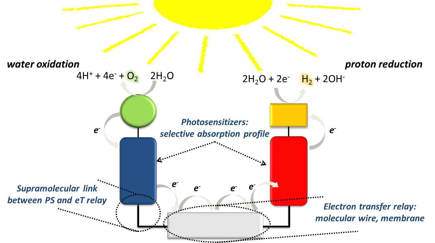Artificial Photosynthesis to Generate Clean Energy