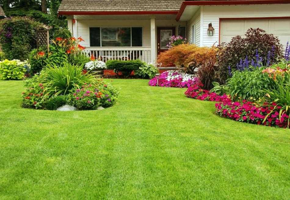 Residence Horticulture Is A Great Deal Greater Than Simply A Hobby