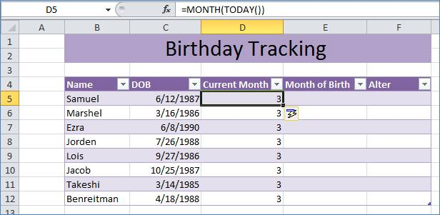 Birthday Tracking in Excel