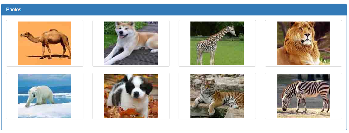 Image viewer using bootstrap carousel