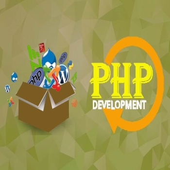 PHP Application Development Services: A Must Solution For Startups