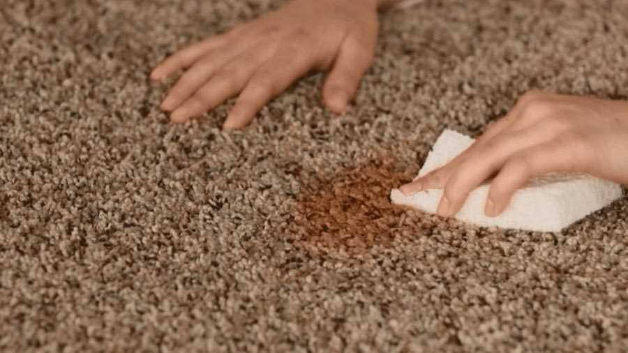 What do you understand by Carpet Steam Cleaning?