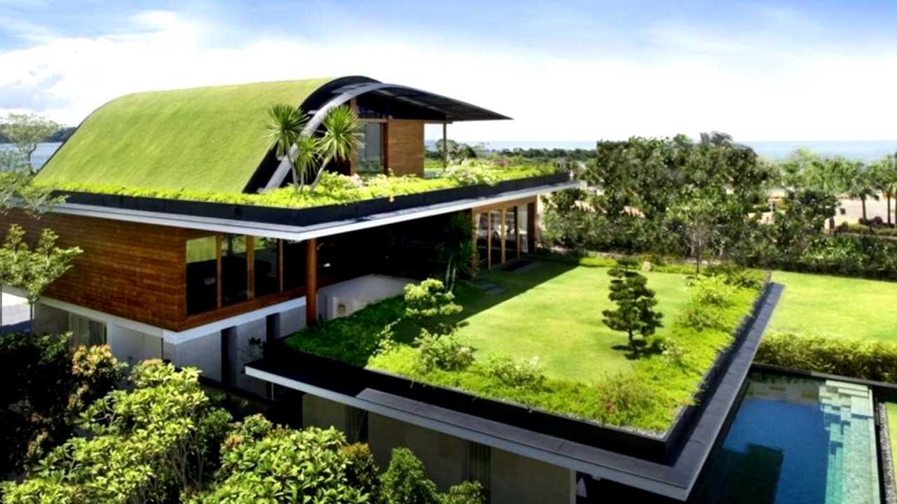 Installing A Green Roof-What, All Do You Need To Know