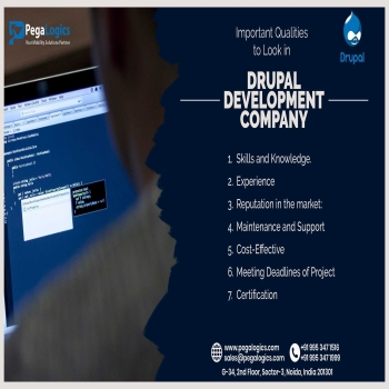 Important Qualities to Look in a Drupal Development Company