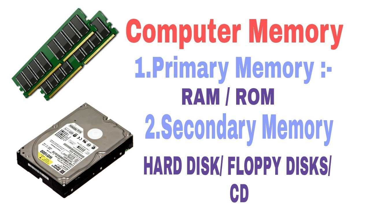 Primary memory and Secondary memory