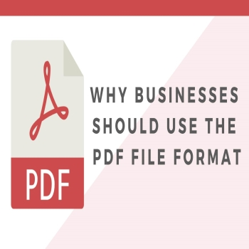 6 of the Best PDF Editors to Meet Your Business Needs