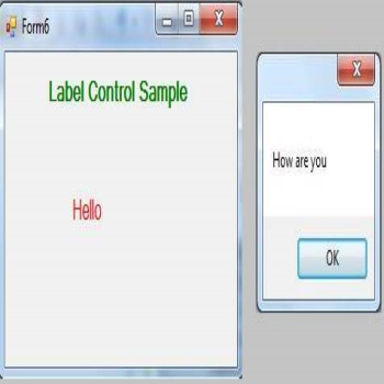 A Label Control in VB.Net