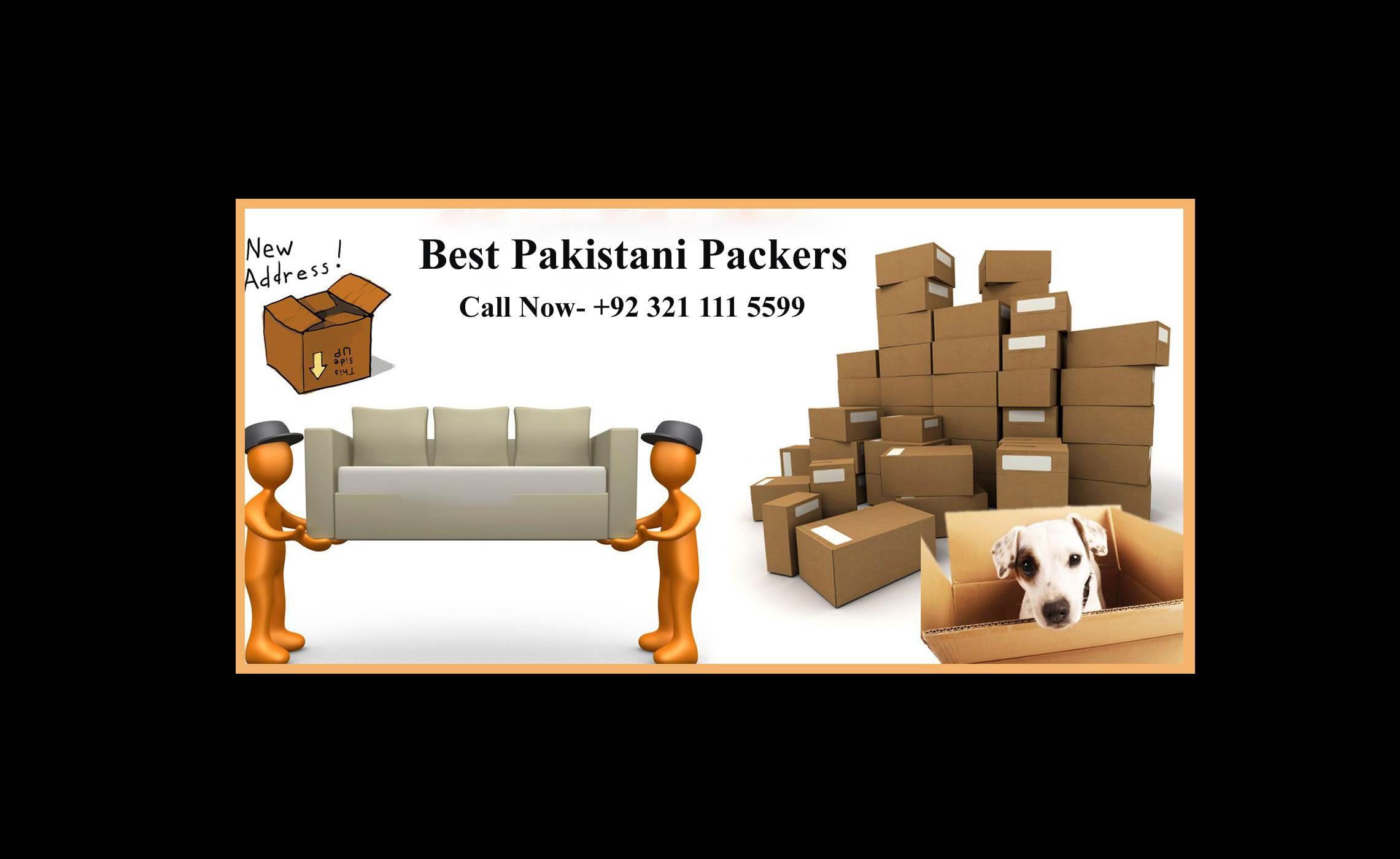 Professional Movers and Packers Services