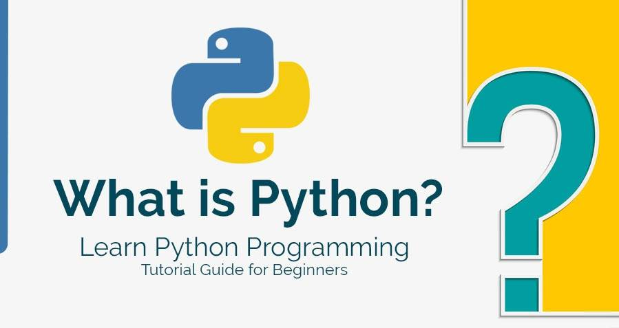 What are the best online courses for Python beginners?
