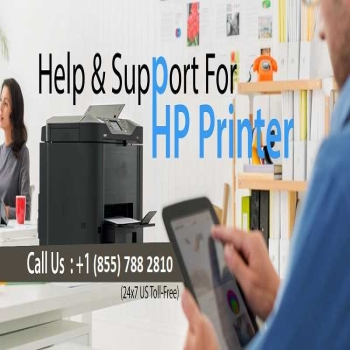 HP Printer Technical Support Number (855 788 2810) | HP Support Assistant