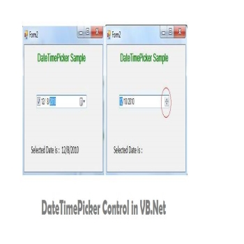 DateTimePicker Control in VB.Net