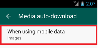 How to turn off auto download media in WhatsApp