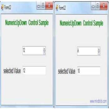 NumericUpDown Control in VB.Net