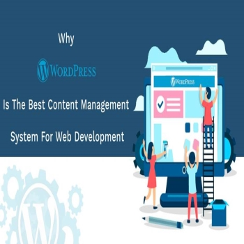Why WordPress is the Best Content Management System for Web Development