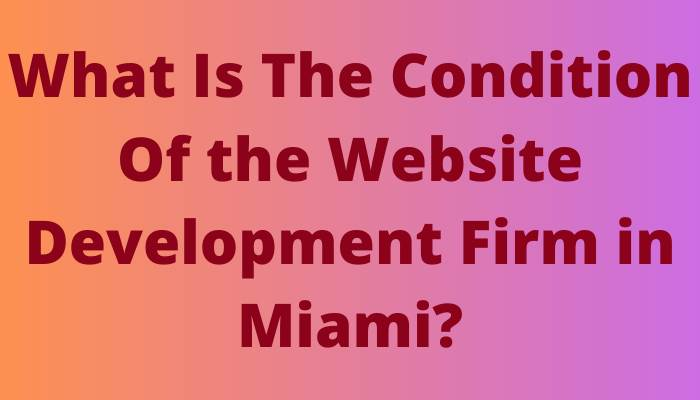 What Is The Condition Of the Website Development Firm in Miami?
