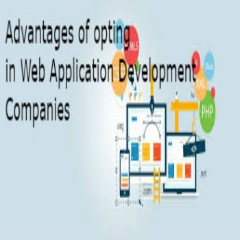 Advantages of opting in Web Application Development Companies
