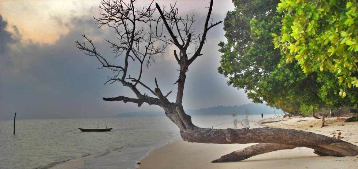 Top 5 Most Famous Beaches in Andaman Nicobar Islands