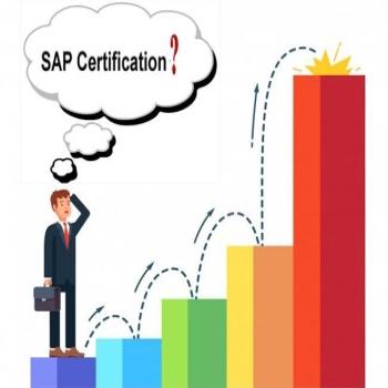 What is the Scope of SAP EWM?