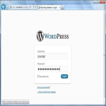 Creating and Using Posts in WordPress