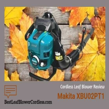 Top Best Cordless Blower Reviews