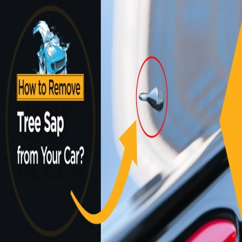 How to Remove Tree Sap from Your Car?